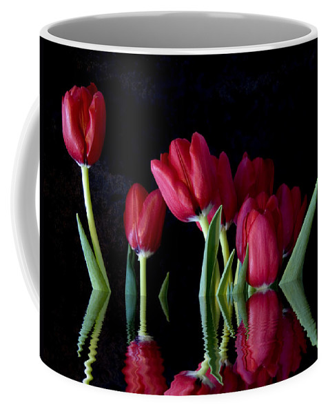 New England Photos Coffee Mug featuring the photograph Beautiful Reflection by Nancie DeMellia