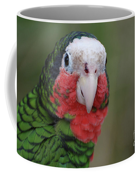 Conure Coffee Mug featuring the photograph Beautiful Ruffled Green Feathers On A Conure by DejaVu Designs