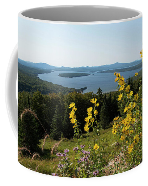 Landscape Coffee Mug featuring the photograph Beautiful Summer Day by Jan Mulherin