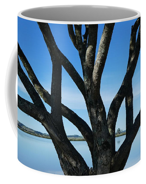 Coffee Mug featuring the photograph Beautiful Winters Day by The McFarlane's