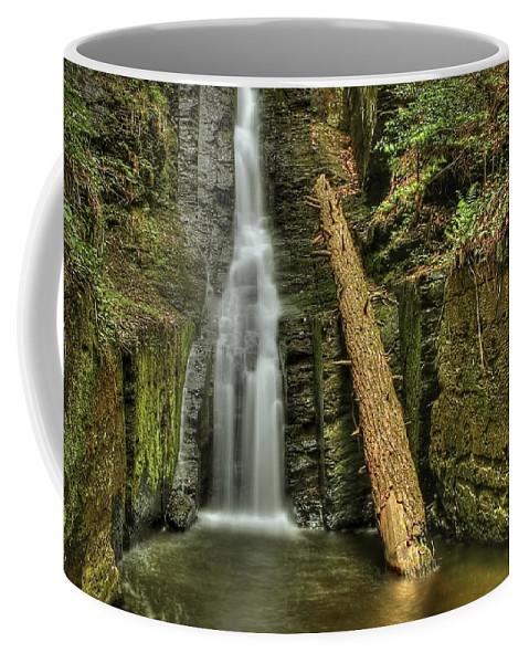 Beautiful Coffee Mug featuring the photograph Beautifully Confined by Evelina Kremsdorf