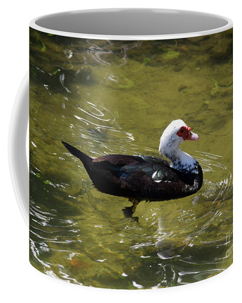 Muscovy Coffee Mug featuring the photograph Beautifully Homely by William Tasker