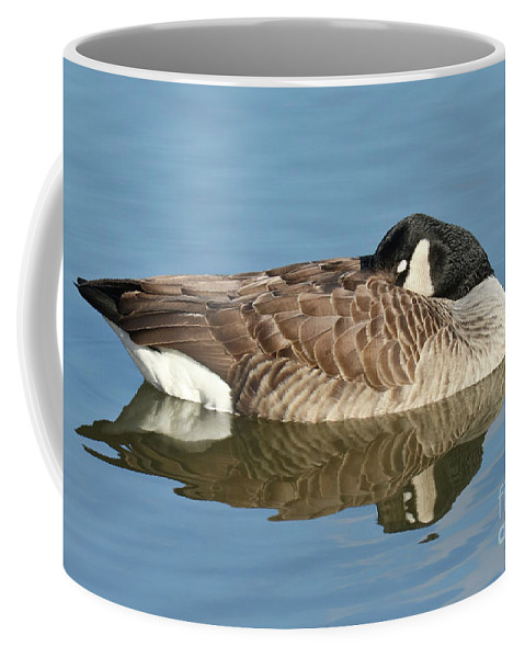 Christian Coffee Mug featuring the photograph Beauty At Rest by Anita Oakley