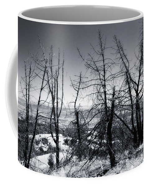 Fire Coffee Mug featuring the photograph Beauty Beyond The Fire by Donna Blackhall