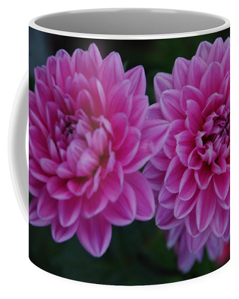 Coffee Mug featuring the photograph Beauty by Carol Eliassen