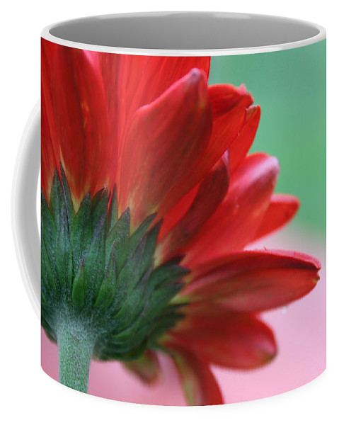 Flowers Coffee Mug featuring the photograph Beauty From Behind by Linda Sannuti