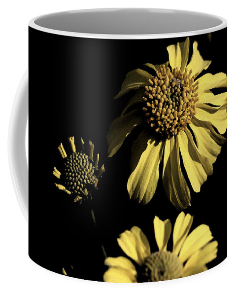 Beauty In The Darkness Coffee Mug featuring the photograph Beauty In The Darkness by Lisa S Baker