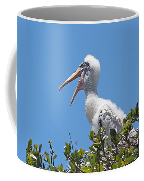 Wildlife Coffee Mug featuring the photograph Beauty Is In The Eye Of The Beholder by Kenneth Albin