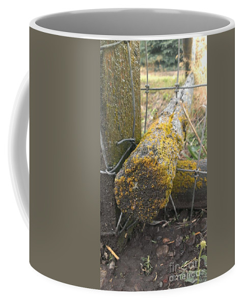 Moss Coffee Mug featuring the photograph Beauty On The Ranch by LKB Art and Photography