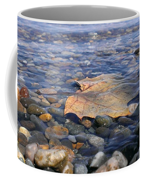 Columbia River Coffee Mug featuring the photograph Beauty On The Shore by LKB Art and Photography