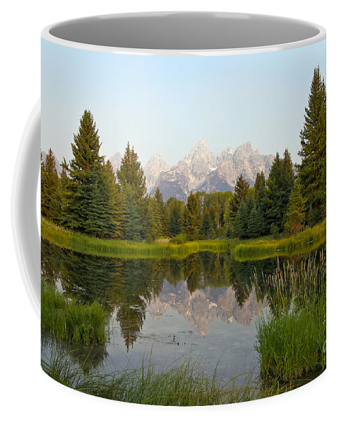 Schwabacher Landing Coffee Mug featuring the photograph Beaver Pond At Schwabacher Landing by Teresa Zieba