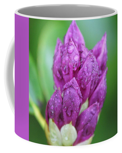Flower Coffee Mug featuring the photograph Bedazzled by Alex Grichenko
