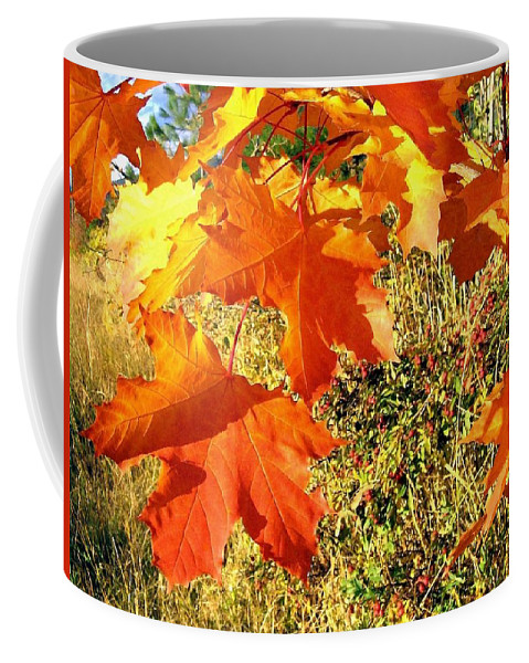 Autumn Coffee Mug featuring the photograph Bedazzling by Will Borden