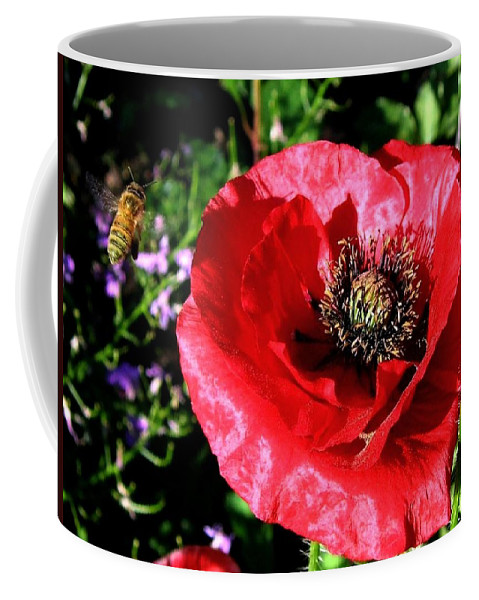 Bee Coffee Mug featuring the photograph Bee And Red Poppy by Will Borden