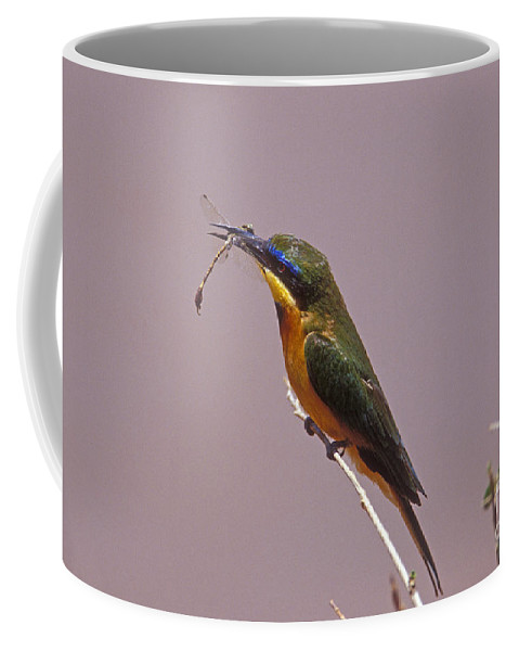 African Birds Coffee Mug featuring the photograph Bee Eater And Dragonfly by Sandra Bronstein