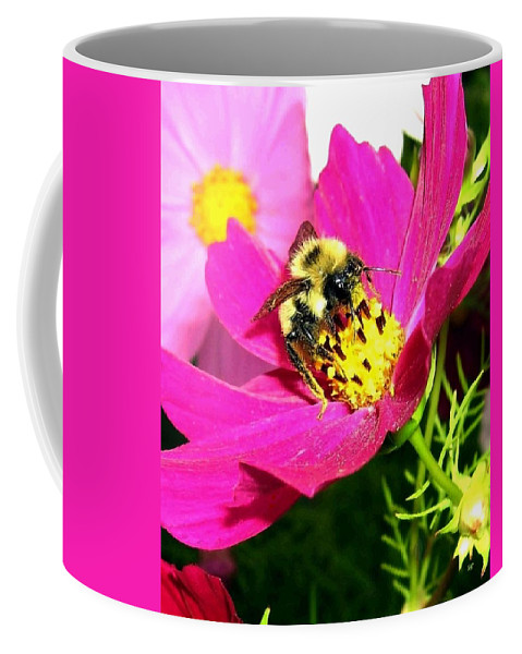 Bee Coffee Mug featuring the photograph Bee-line 3 by Will Borden