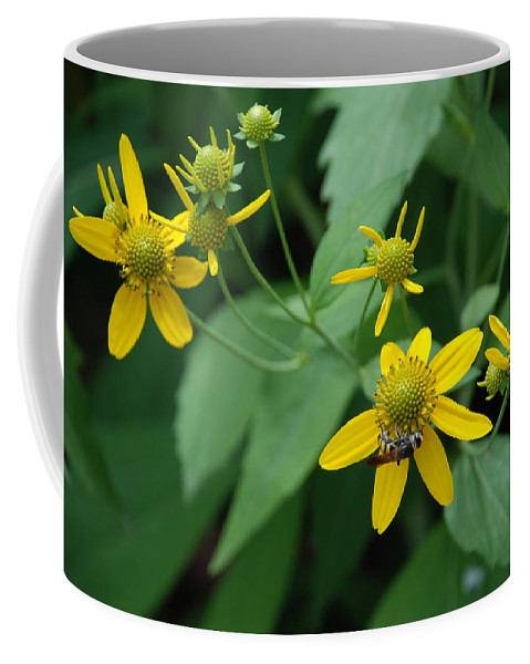 Macro Coffee Mug featuring the photograph Bee On A Flower by Rob Hans
