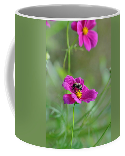 Bee Coffee Mug featuring the photograph Bee On Flower by Barbara Treaster