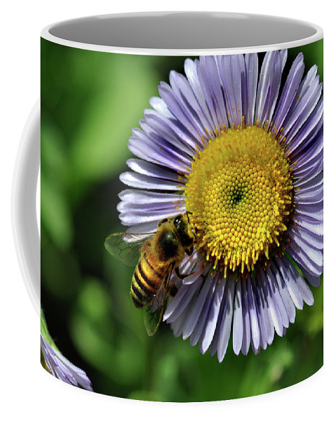 Insect Coffee Mug featuring the photograph Bee On Purple Petals by Barbara Treaster