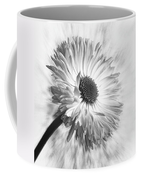 Beautiful Coffee Mug featuring the photograph Bellis In Mono  #flower #flowers by John Edwards