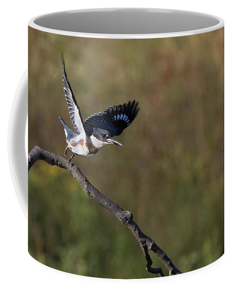 Belted Kingfisher Coffee Mug featuring the photograph Belted Kingfisher Liftoff by Art Cole