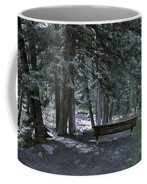 Bench Coffee Mug featuring the photograph Bench By The Stream II by Madeline Ellis