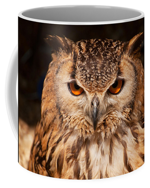 Owl Coffee Mug featuring the photograph Bengal Owl by Chris Thaxter