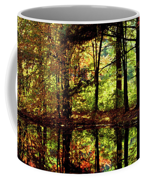 Bernharts Dam Coffee Mug featuring the photograph Bernharts Dam Fall 006 by Scott McAllister