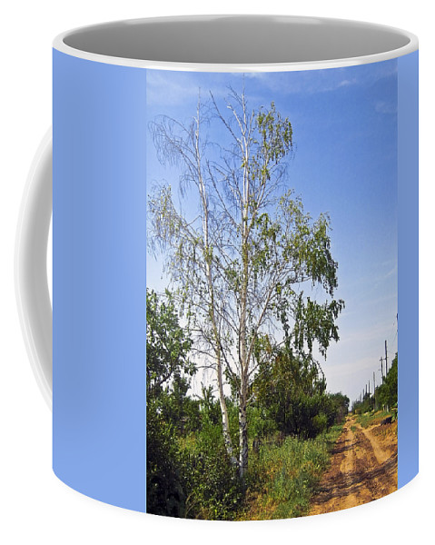 Birch Coffee Mug featuring the photograph Beside The Village Road by Svetlana Sewell