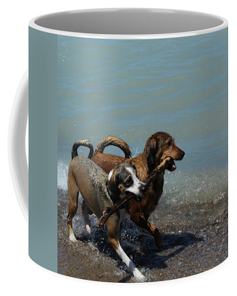 Dogs Coffee Mug featuring the photograph Best Friends by Kaeleigh Gray
