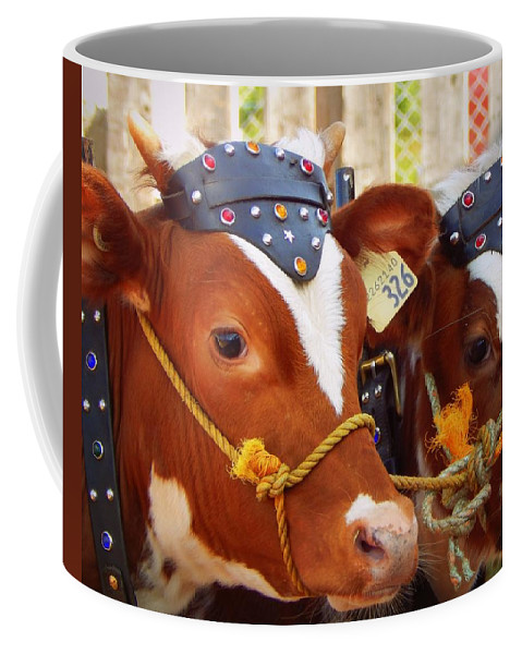Best In Class Coffee Mug featuring the photograph Best In Class by Karen Cook