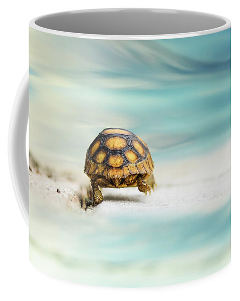 Turtle Coffee Mug featuring the photograph Big Big World by Laura Fasulo