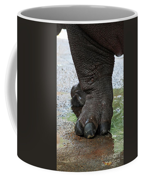 Big Foot Coffee Mug featuring the photograph Big Foot by Robert Meanor