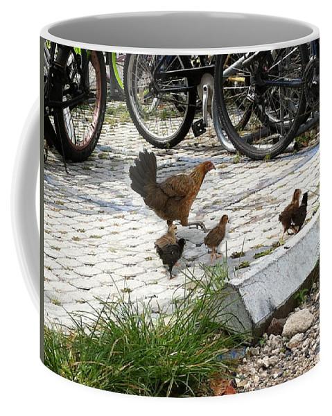 Karen Zuk Rosenblatt Art And Photography Coffee Mug featuring the photograph Biker Chicks by Karen Zuk Rosenblatt