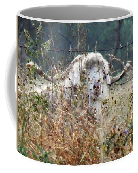 Landscape Coffee Mug featuring the photograph Billy by Denis King