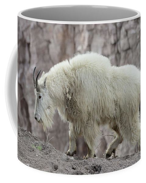 Billy Coffee Mug featuring the photograph Billy Goats Gruff by Whispering Peaks Photography