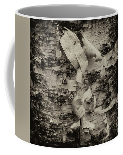 Maine Coffee Mug featuring the photograph Birch Bark Detail Monotone Img_6361 by Greg Kluempers