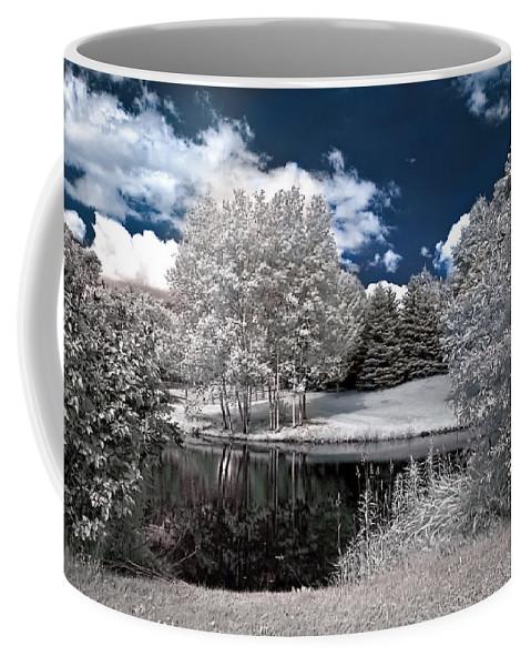 Landscape Coffee Mug featuring the photograph Birch Cluster II by Steve Harrington