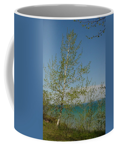Birch Tree Coffee Mug featuring the photograph Birch Tree Over Lake by Anita Burgermeister