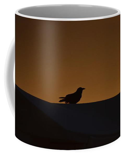 Bird Coffee Mug featuring the photograph Bird At The Sunrise by Rana Agaoglu