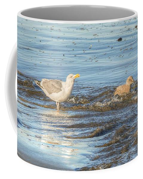 Landscape Coffee Mug featuring the photograph Bird Bath by Kristina Rinell