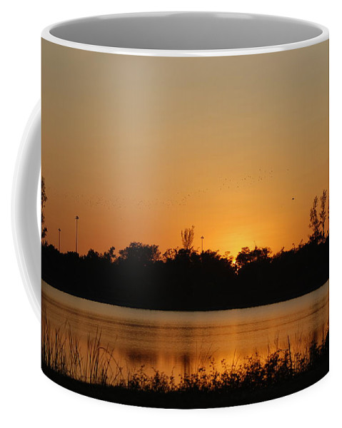Nature Coffee Mug featuring the photograph Bird In The Sunset by Rob Hans