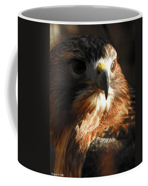 Redtail Coffee Mug featuring the photograph Bird Of Mystery by Regine Brindle