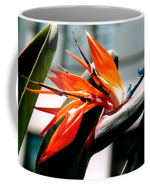Flowers Coffee Mug featuring the photograph Bird Of Paradise 2 by Susanne Van Hulst