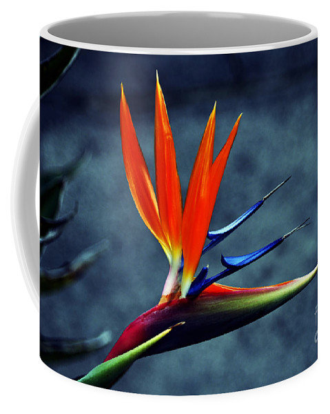 Clay Coffee Mug featuring the photograph Bird Of Paradise by Clayton Bruster