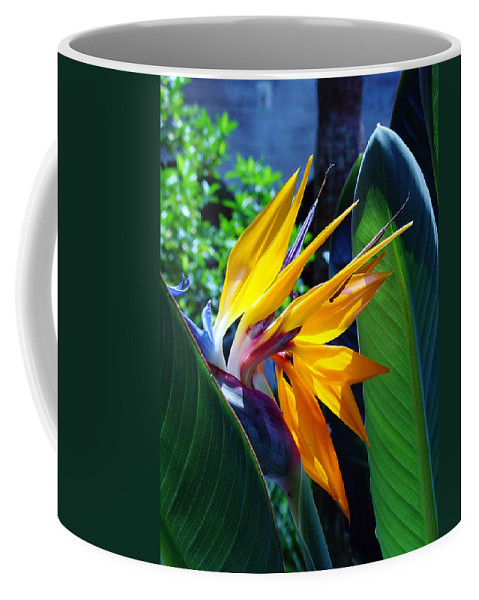 Flowers Coffee Mug featuring the photograph Bird Of Paradise by Susanne Van Hulst
