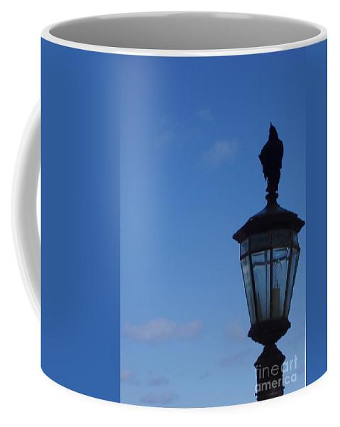 Bird Coffee Mug featuring the photograph Bird On Lamplight by Deborah Crew-Johnson