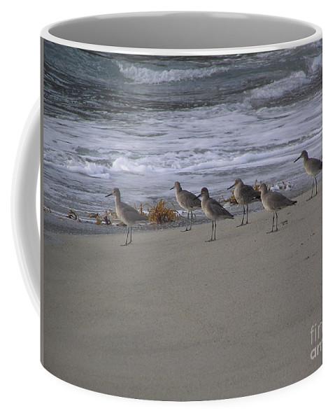 Birds Coffee Mug featuring the photograph Bird Walk by Louise Magno