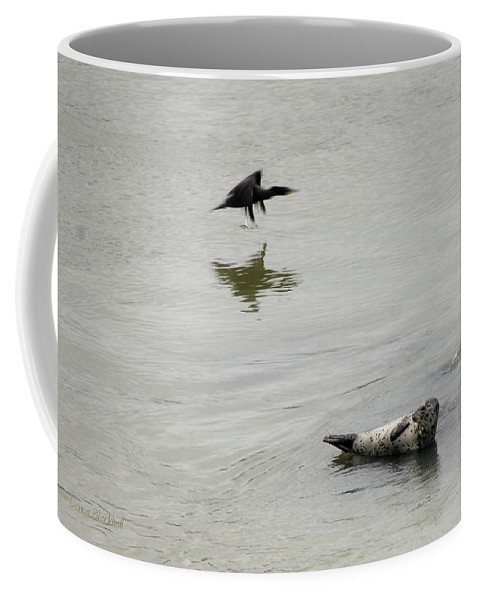 Seal Coffee Mug featuring the photograph Bird Watching by Donna Blackhall