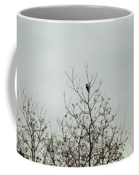 Coffee Mug featuring the photograph Bird005 by Jeff Downs